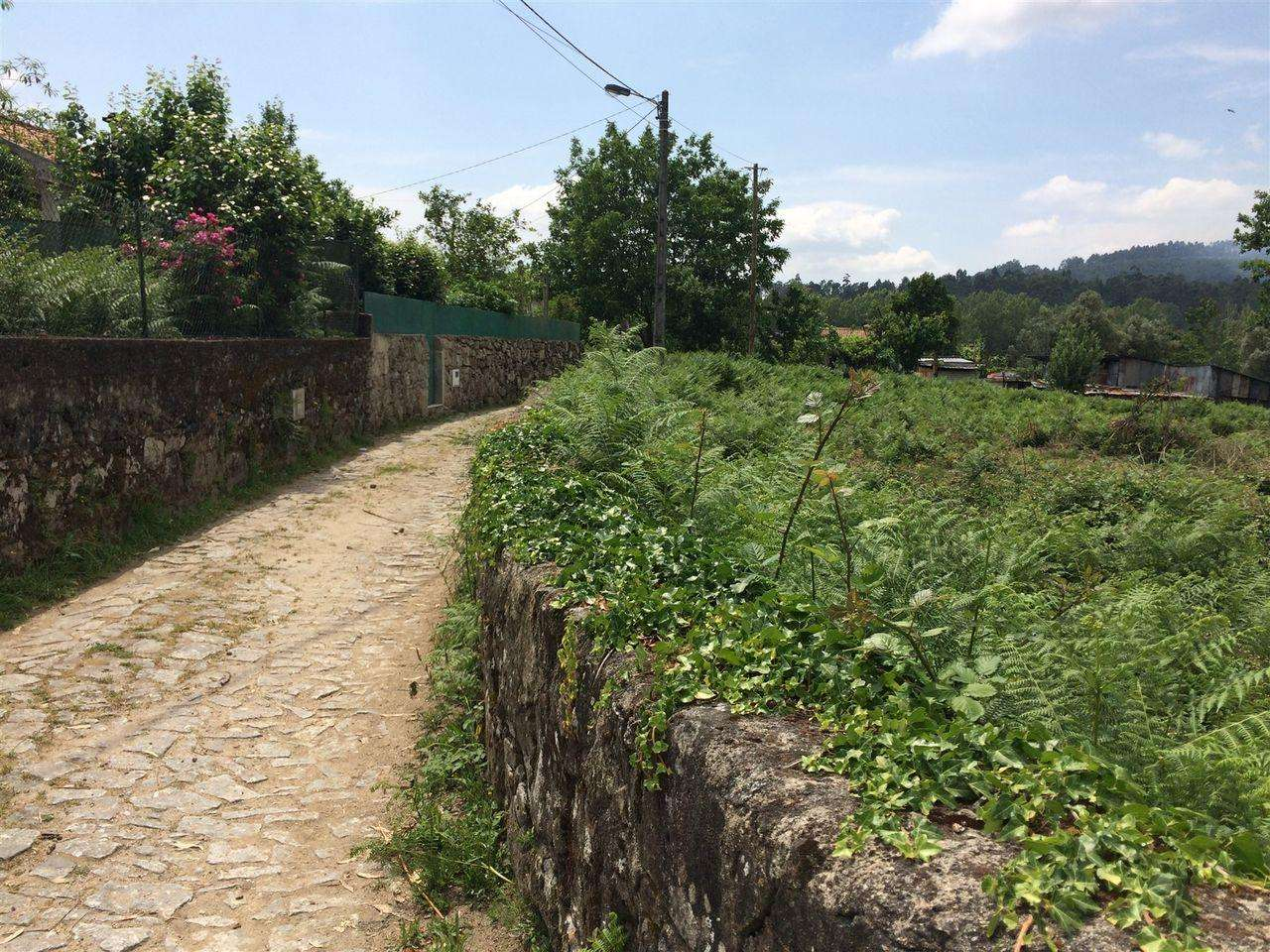 Terreno para comprar, Vidigueira - Foto 3
