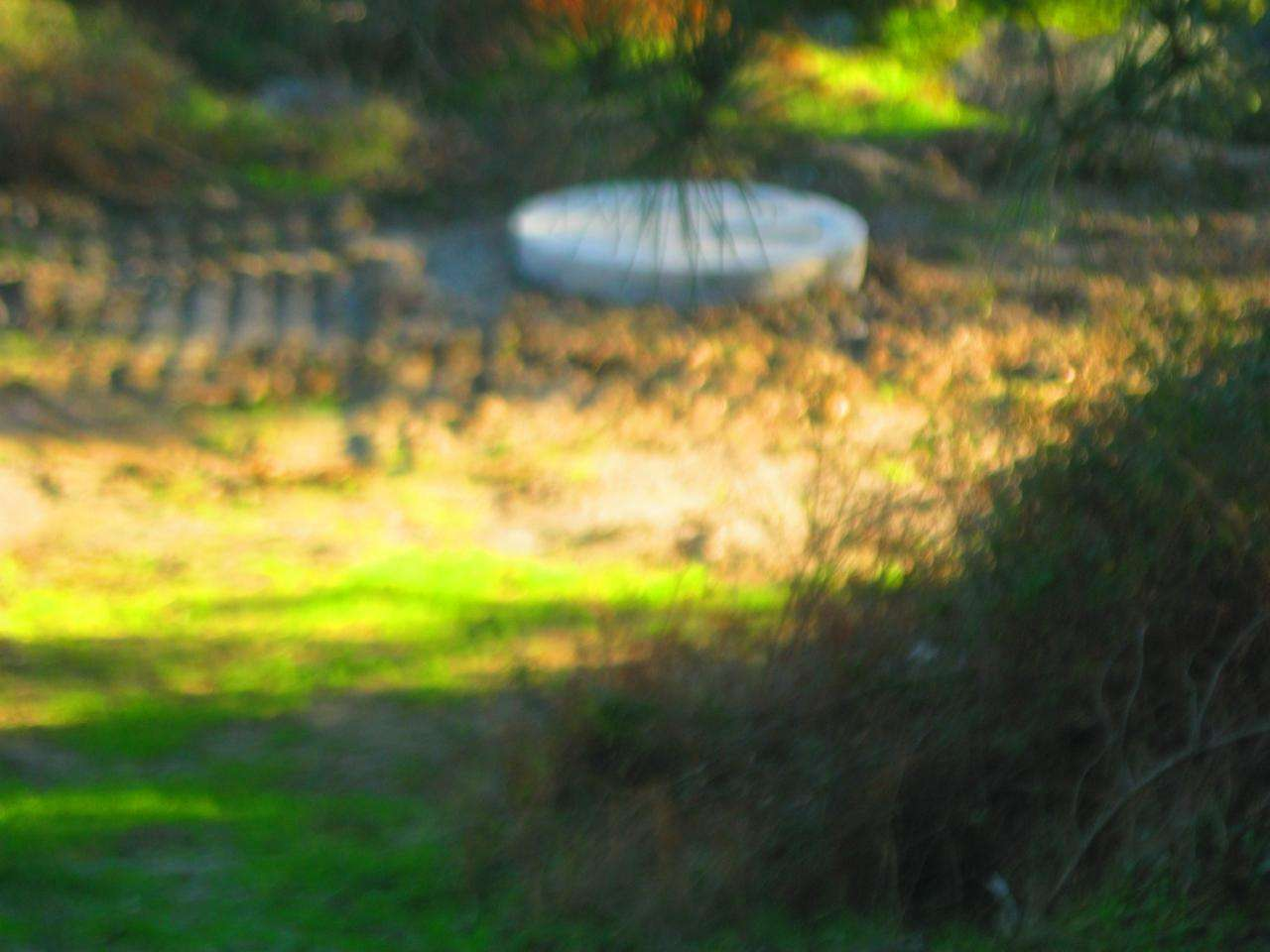 Terreno para comprar, Vale de Prazeres e Mata da Rainha, Castelo Branco - Foto 1