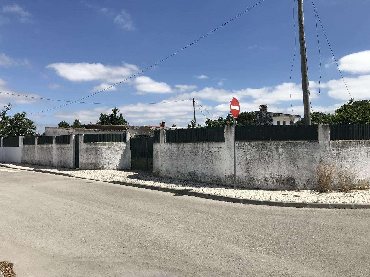 Terreno para comprar, Quinta do Anjo, Setúbal - Foto 13