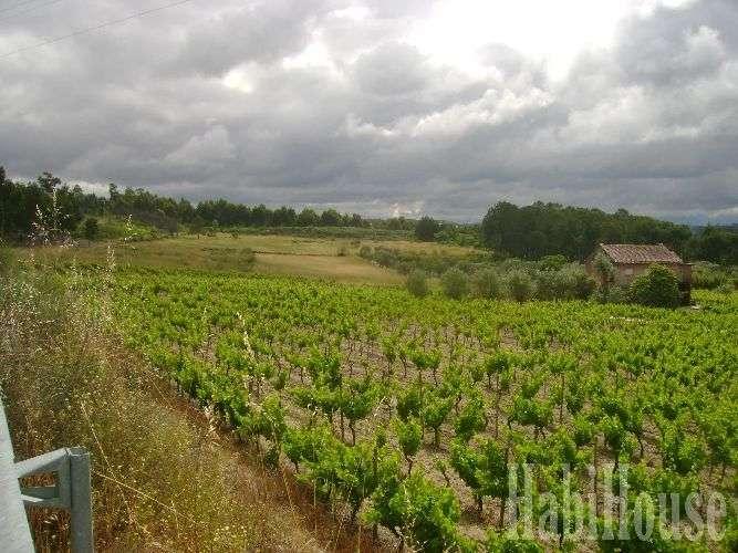 Quintas e herdades para comprar, Santar e Moreira, Nelas, Viseu - Foto 5