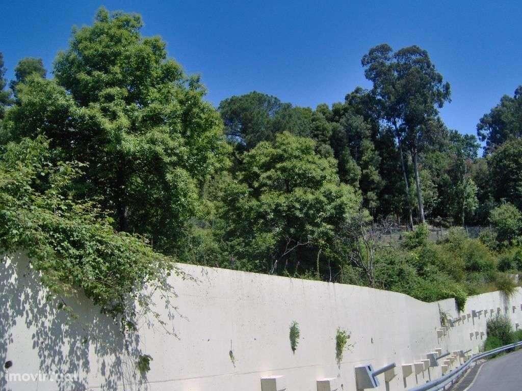Terreno para comprar, Ruílhe, Braga - Foto 6