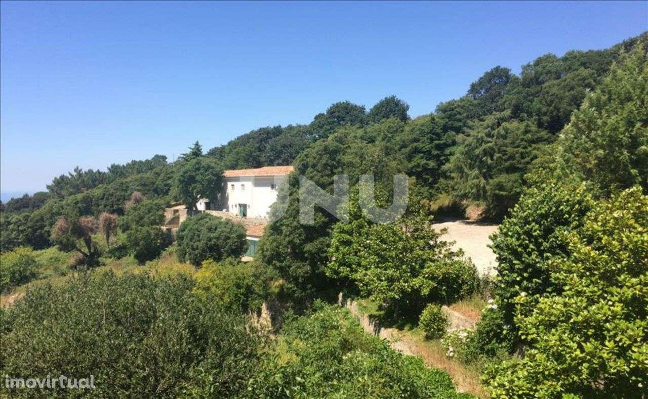 Quintas e herdades para comprar, Colares, Sintra, Lisboa - Foto 10