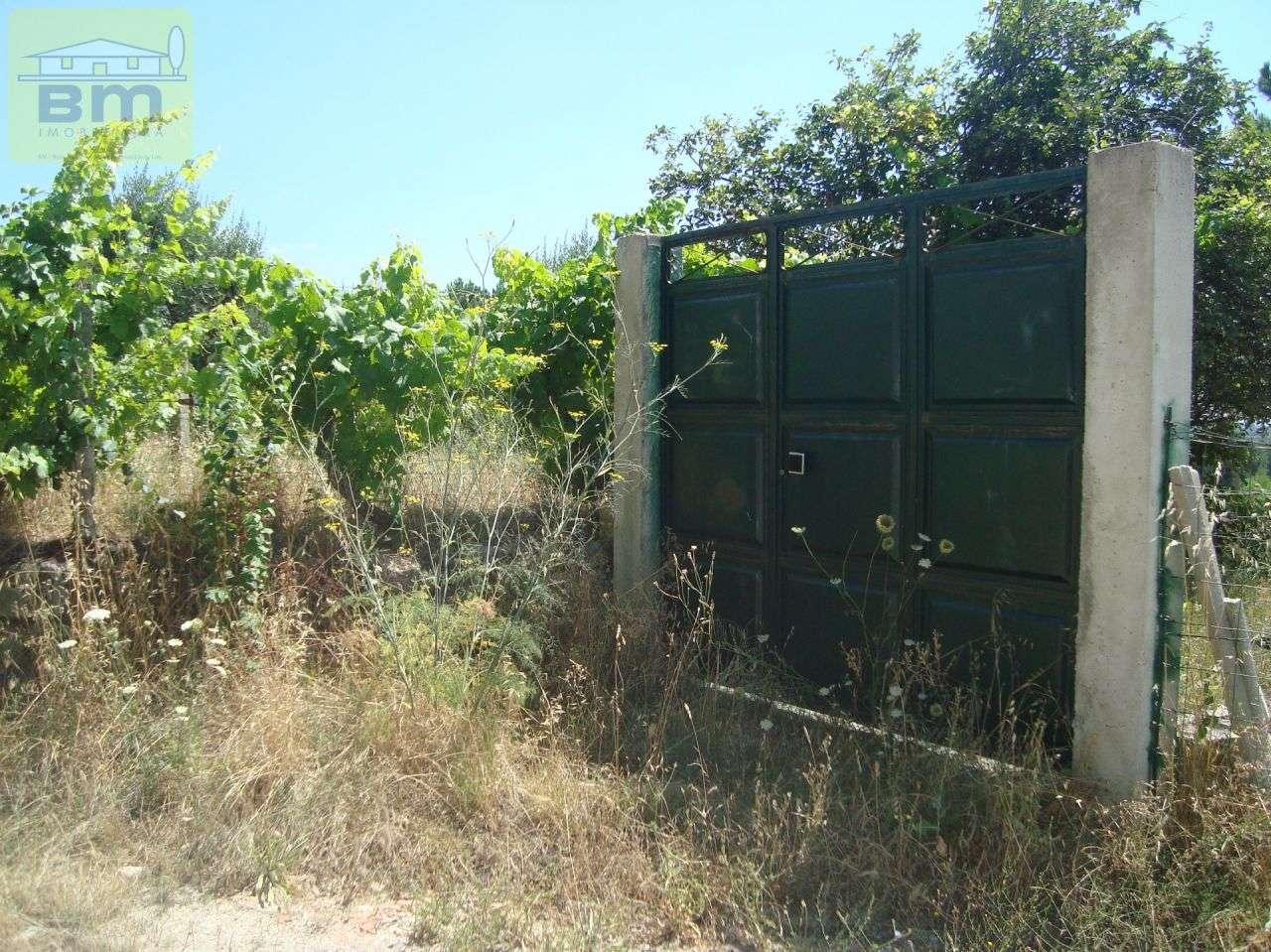 Quintas e herdades para comprar, Almaceda, Castelo Branco - Foto 48