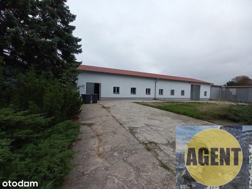 Duży obiekt produkcyjno-magazynowy w Gnieźnie