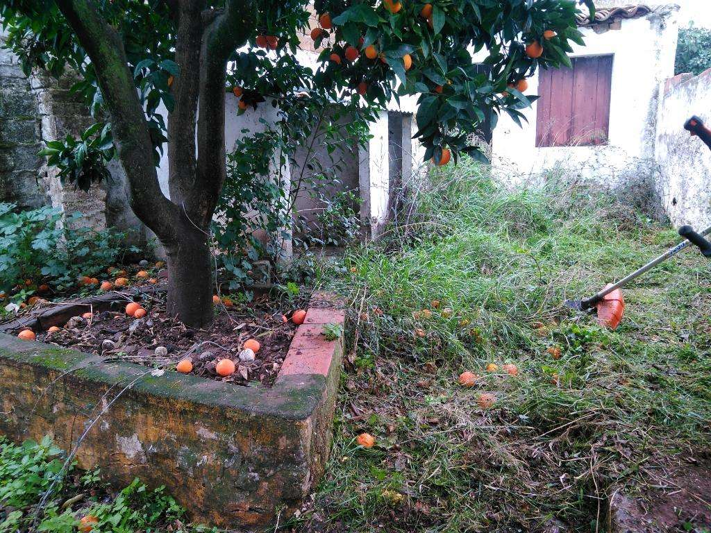 Moradia para comprar, Viana do Alentejo - Foto 13