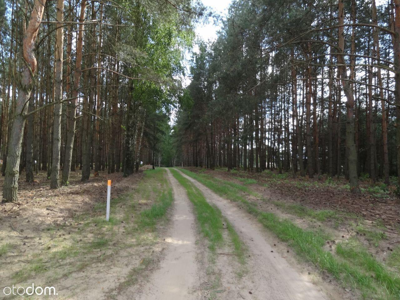 Działki budowlane Gorzewo 1380 m2, 600m do j.Białe