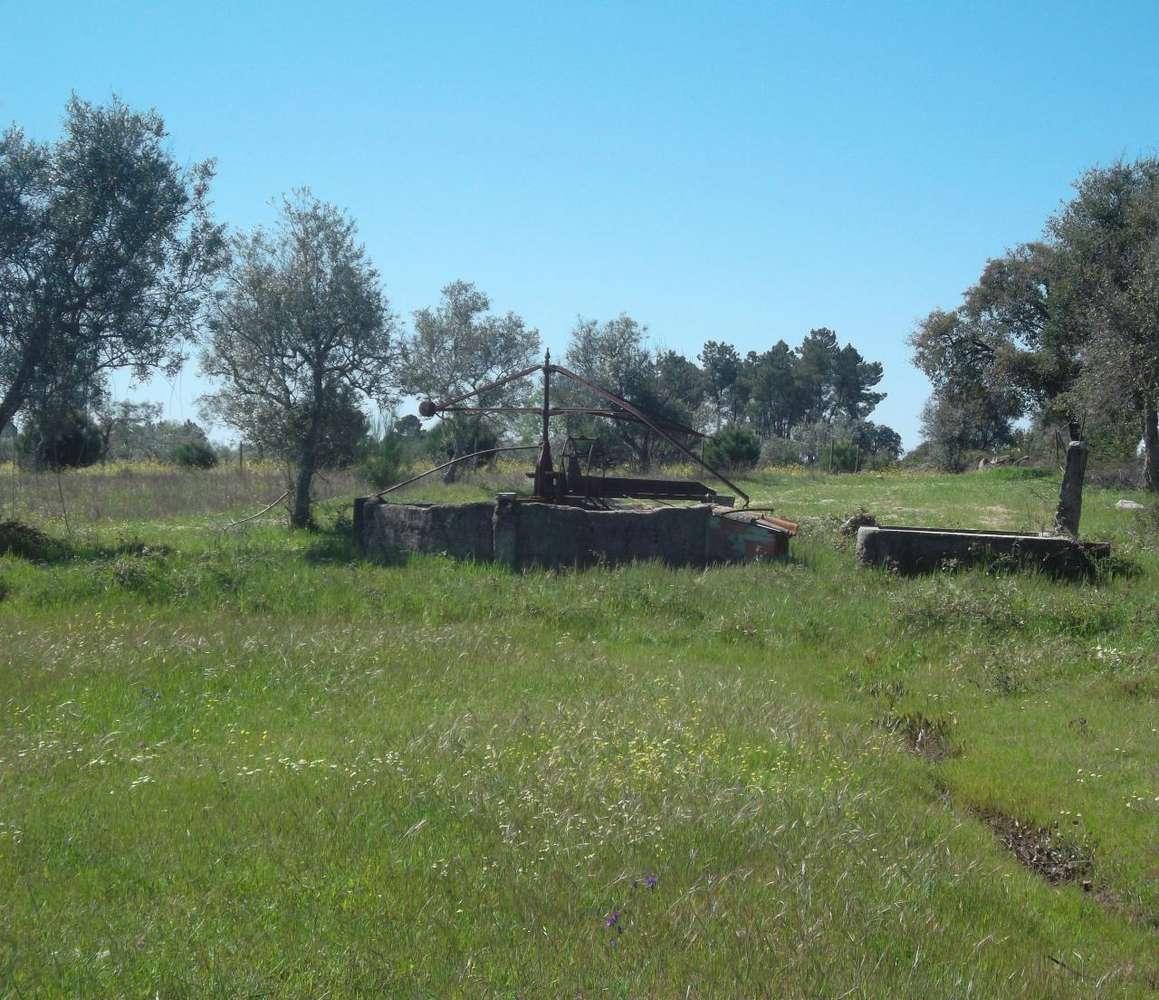 Quintas e herdades para comprar, Lardosa, Castelo Branco - Foto 7