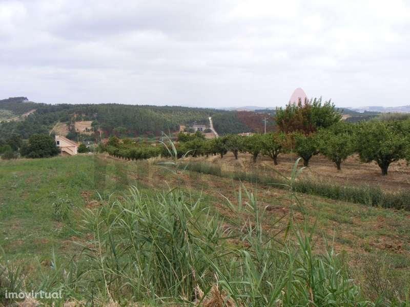 Quintas e herdades para comprar, Lourinhã e Atalaia, Lourinhã, Lisboa - Foto 34