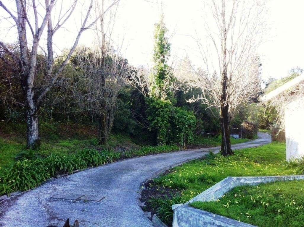 Quintas e herdades para comprar, Arruda dos Vinhos - Foto 30