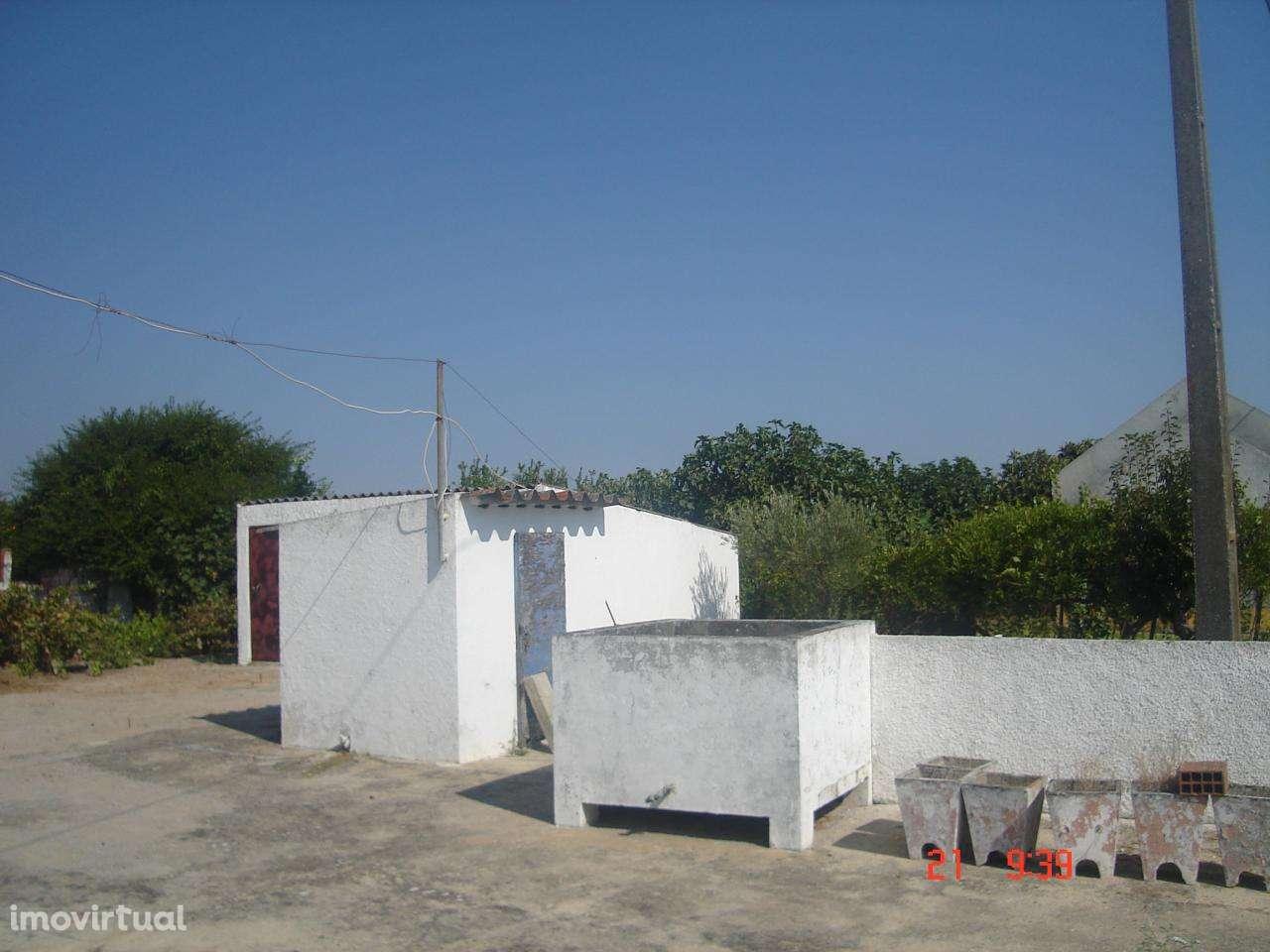 Quintas e herdades para comprar, Poceirão e Marateca, Setúbal - Foto 9