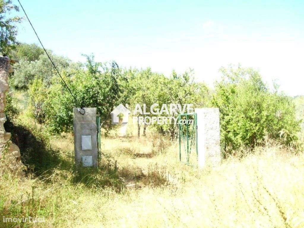 Terreno para comprar, Alte, Faro - Foto 14