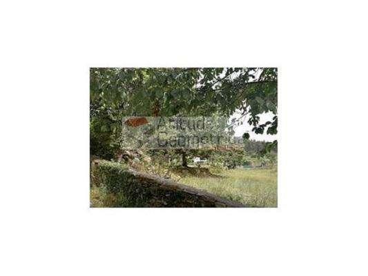Quintas e herdades para comprar, Alvarenga, Arouca, Aveiro - Foto 9