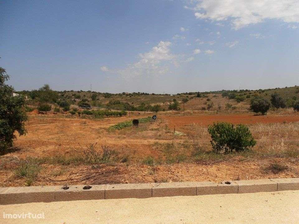 Quintas e herdades para comprar, Estômbar e Parchal, Lagoa (Algarve), Faro - Foto 41
