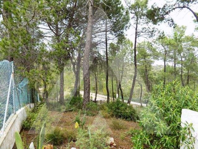 Terreno para comprar, Paderne, Faro - Foto 9
