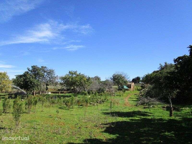 Quintas e herdades para comprar, Mexilhoeira Grande, Portimão, Faro - Foto 10