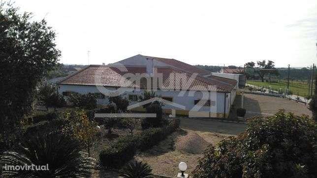 Quintas e herdades para comprar, Branca, Santarém - Foto 10