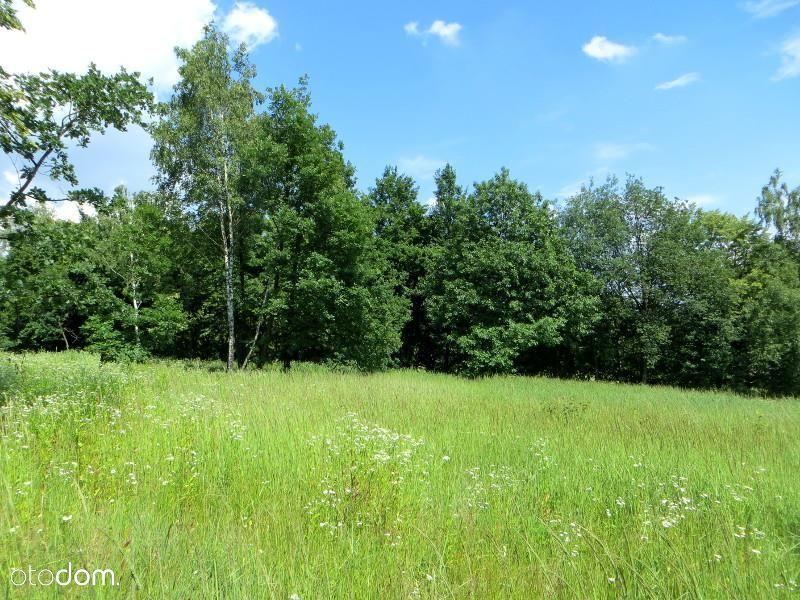 Duża panoramiczna działka pod lasem w Jankowicach