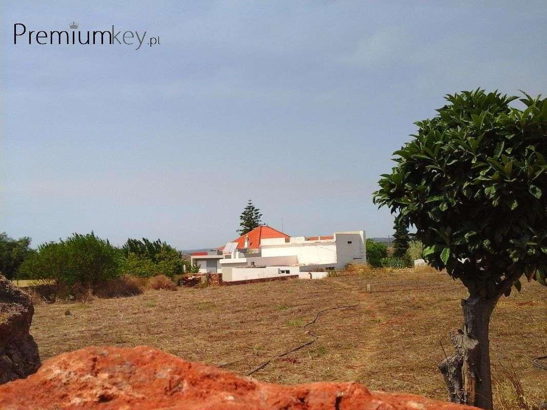 Terreno para comprar, São Bartolomeu de Messines, Faro - Foto 1