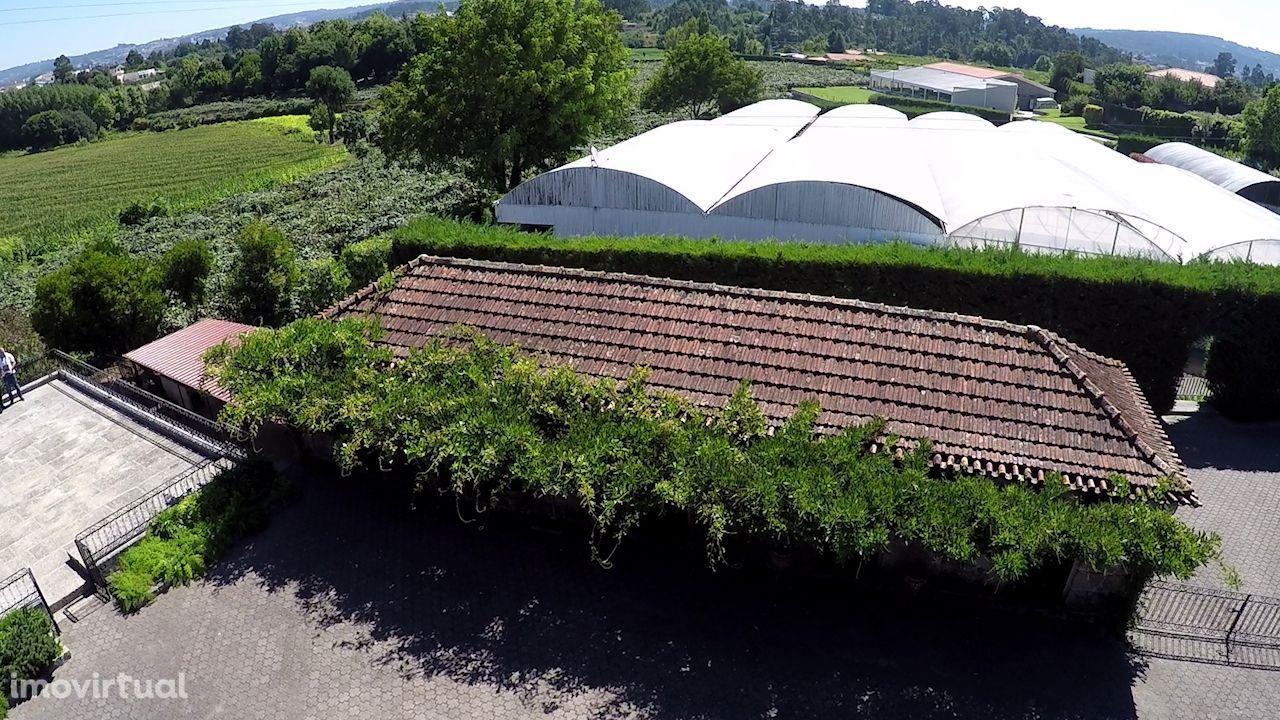 Quintas e herdades para comprar, Termas de São Vicente, Penafiel, Porto - Foto 14