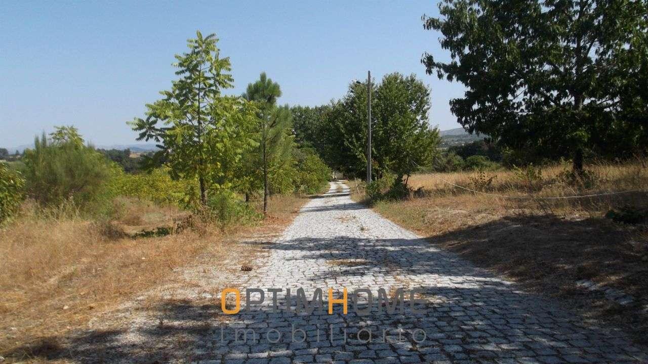 Quintas e herdades para comprar, Caria, Belmonte, Castelo Branco - Foto 5