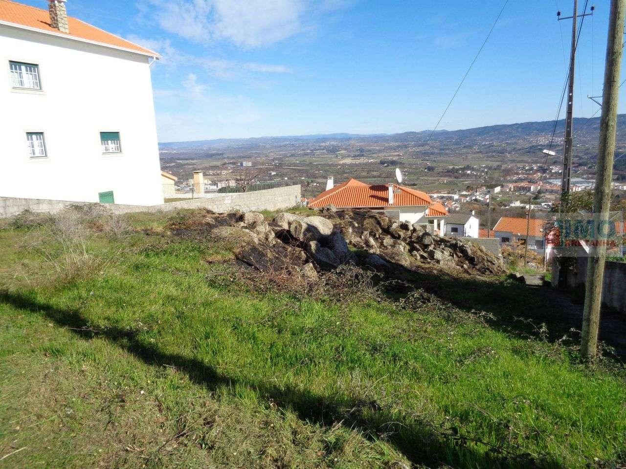 Terreno para comprar, Boidobra, Castelo Branco - Foto 3