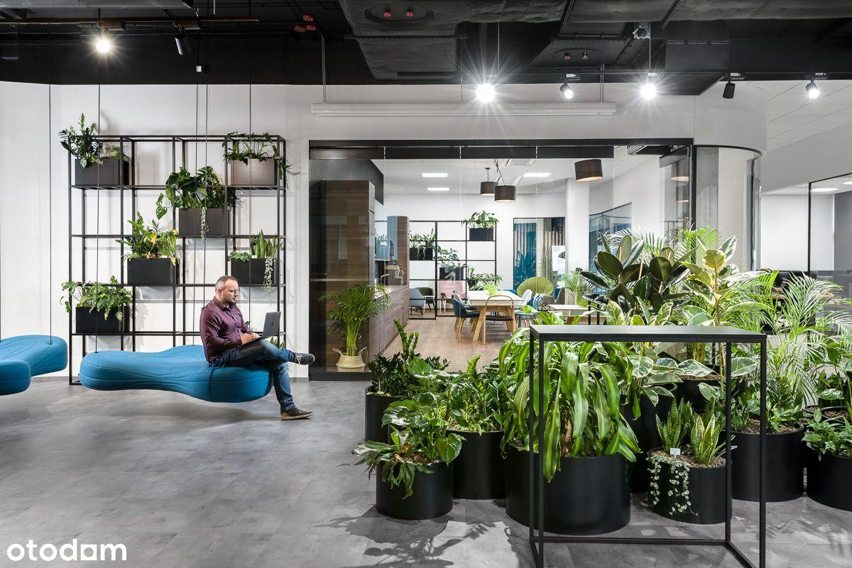 Biuro na elastycznych warunkach w Business Garden