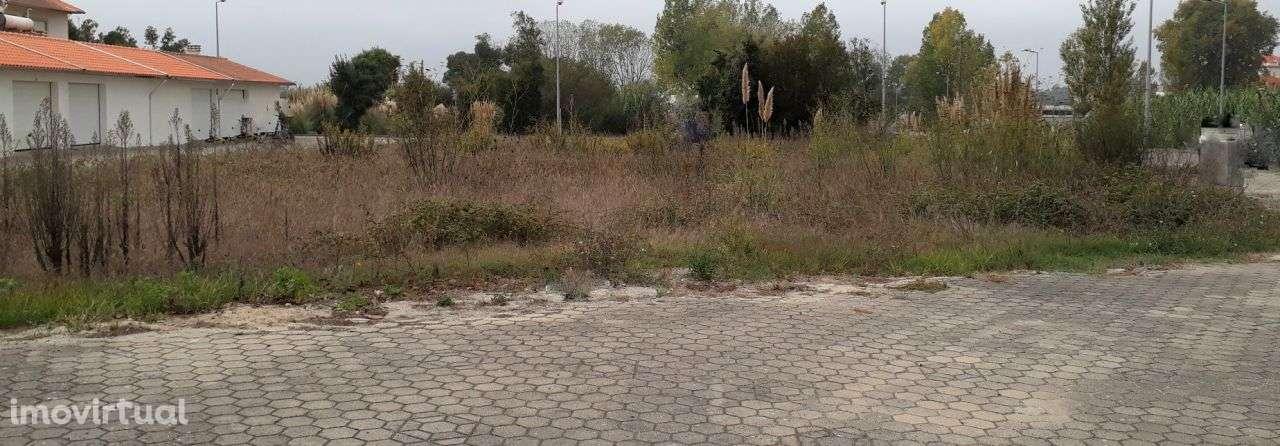 Terreno para comprar, Ílhavo (São Salvador), Ílhavo, Aveiro - Foto 1