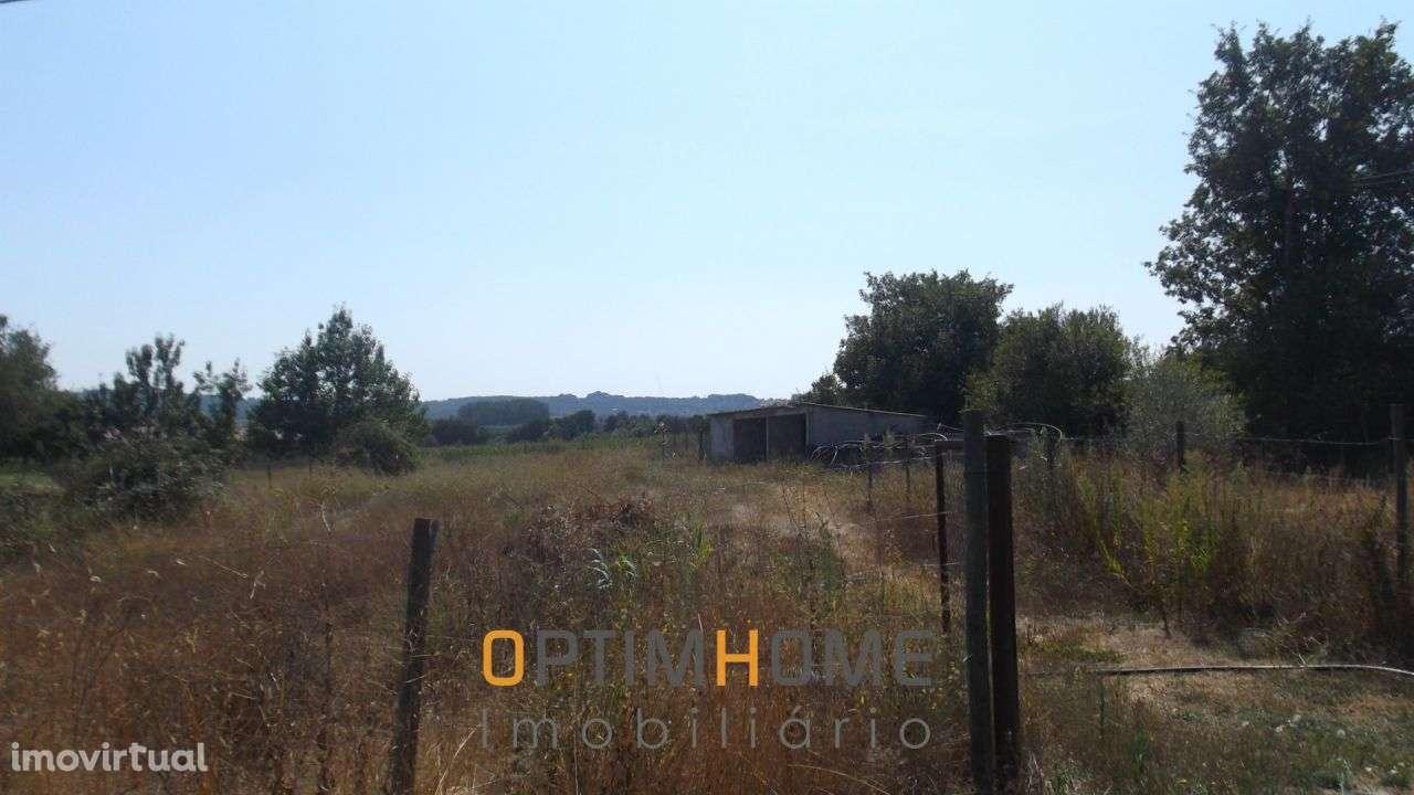 Quintas e herdades para comprar, Caria, Belmonte, Castelo Branco - Foto 29