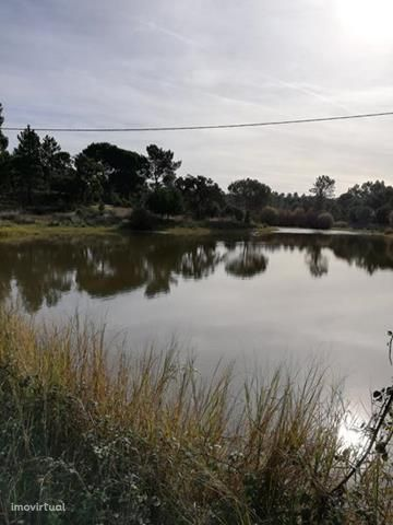 Herdade 25 hectares , montado de sobreiro e pinheiro