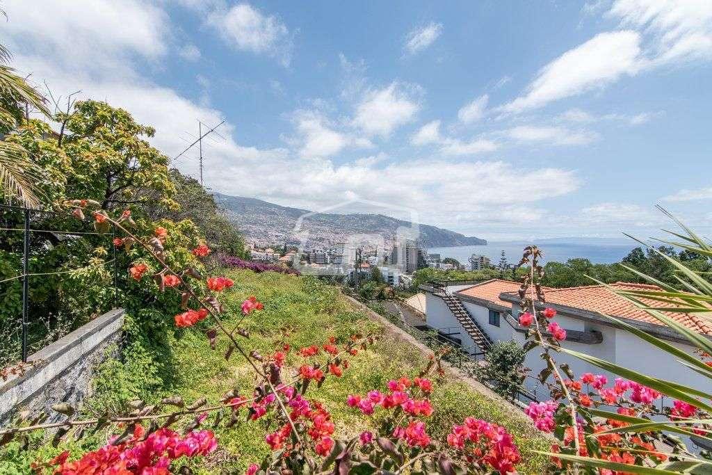 Quintas e herdades para comprar, São Martinho, Ilha da Madeira - Foto 14