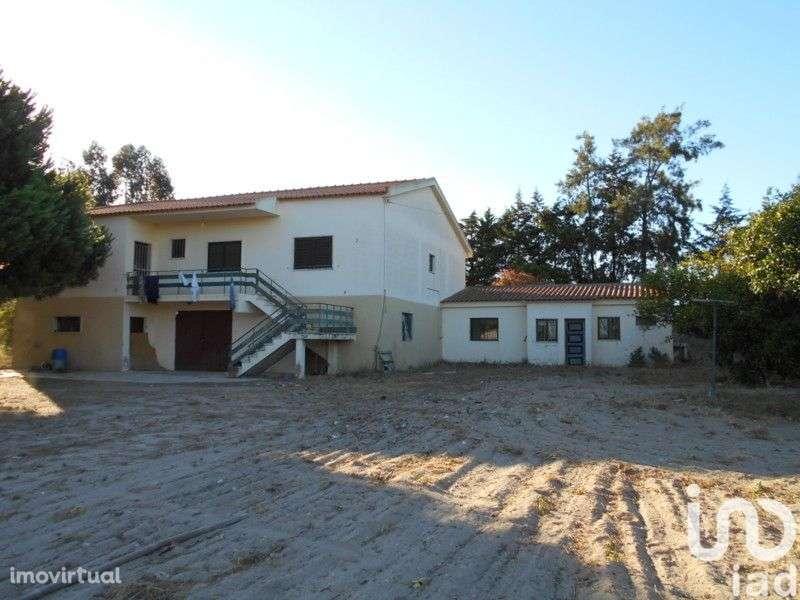 Quintas e herdades para comprar, Gâmbia-Pontes-Alto Guerra, Setúbal - Foto 1