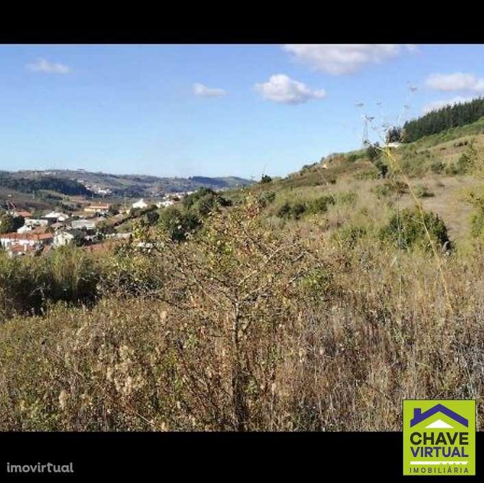 Terreno para comprar, Painho e Figueiros, Cadaval, Lisboa - Foto 2