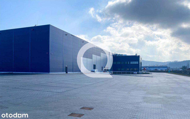 Hala/Magazyn, 1 350 m², Gdynia