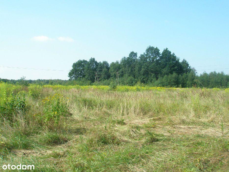 Działka, 15 580 m², Bieruń