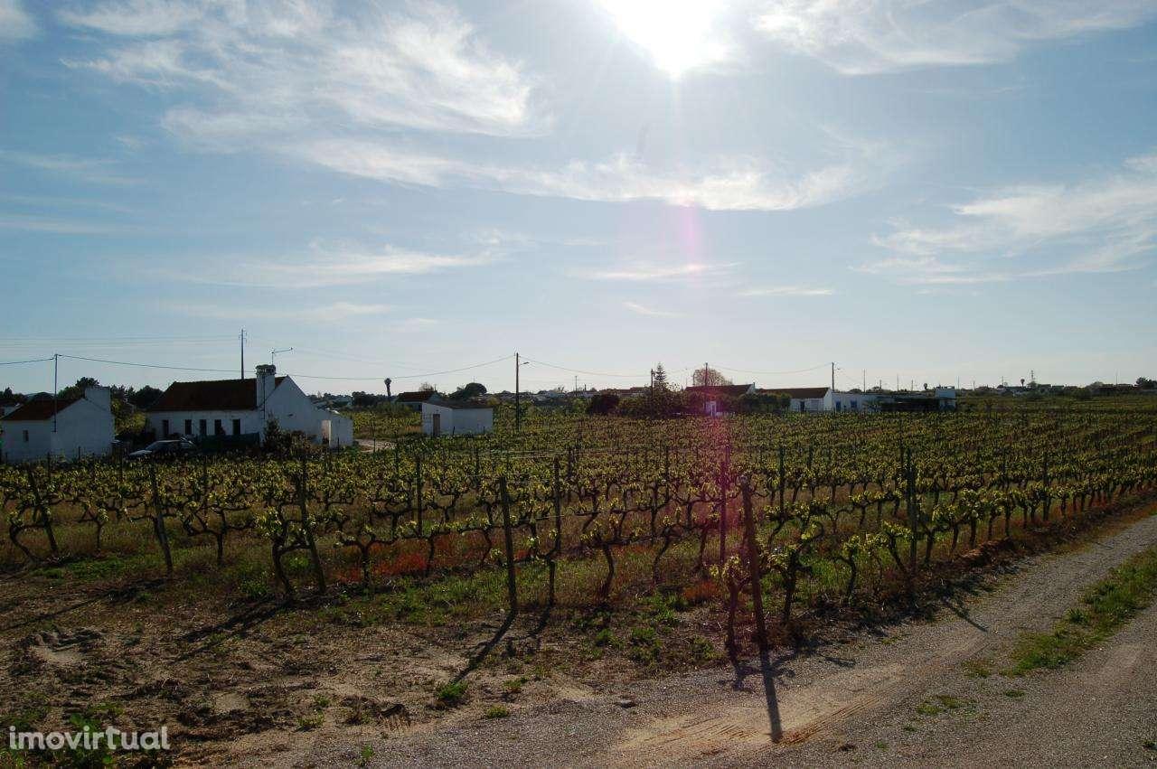 Quintas e herdades para comprar, Pinhal Novo, Setúbal - Foto 2