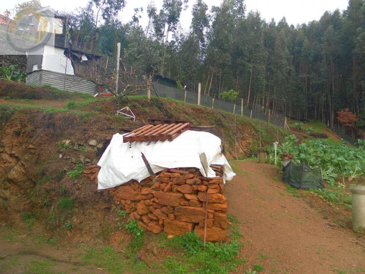 Terreno para comprar, Canedo, Vale e Vila Maior, Santa Maria da Feira, Aveiro - Foto 4
