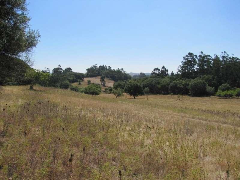 Terreno para comprar, Milharado, Mafra, Lisboa - Foto 5
