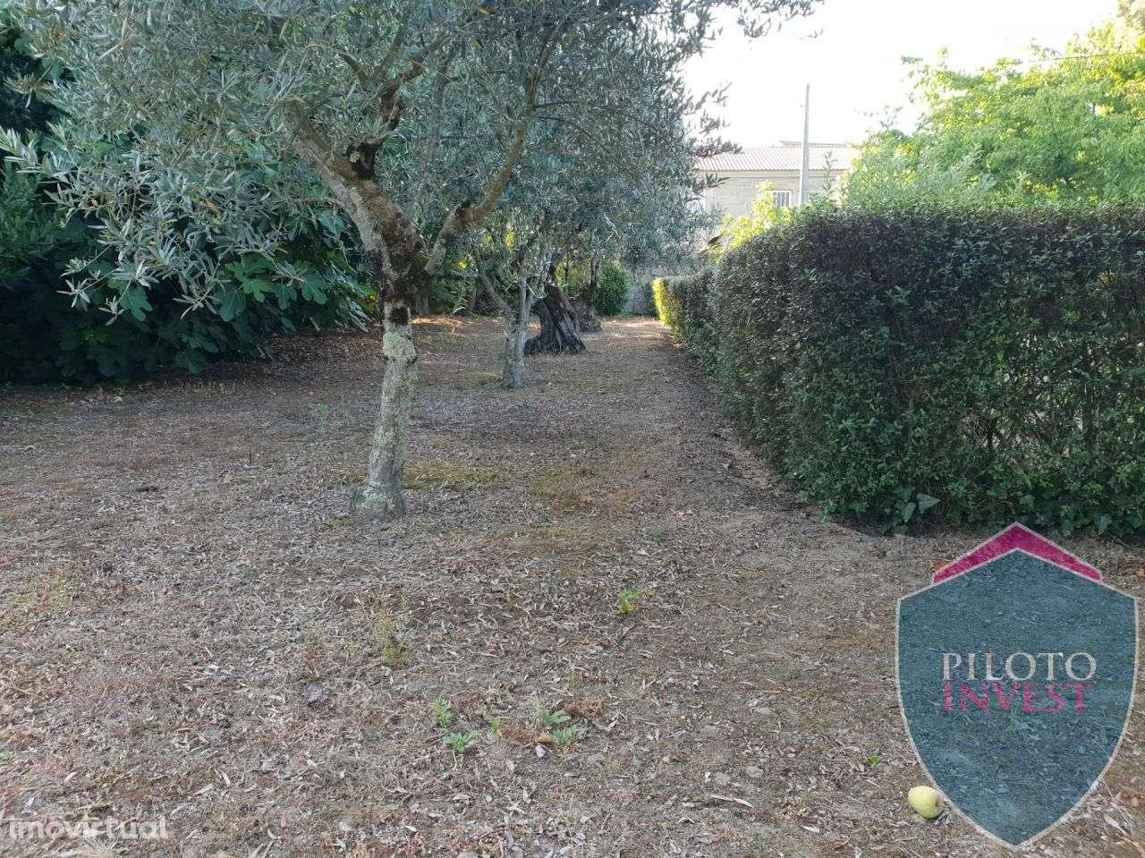 Quintas e herdades para comprar, Povolide, Viseu - Foto 25