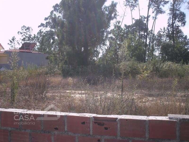 Terreno para comprar, Oliveira, Braga - Foto 2