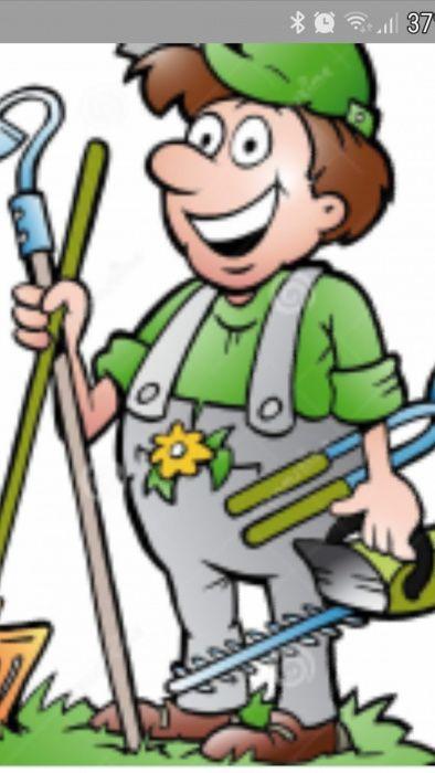 Faço jardins e limpezas de terrenos