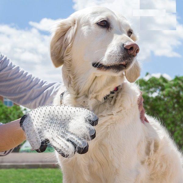Escova Luva para cães e gatos - Remover Pêlo