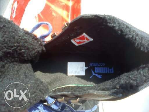72e97abec53 Sapatilha Puma verdadeira em pele modelo exclusivo nº38 100% nova Matosinhos  - imagem 6
