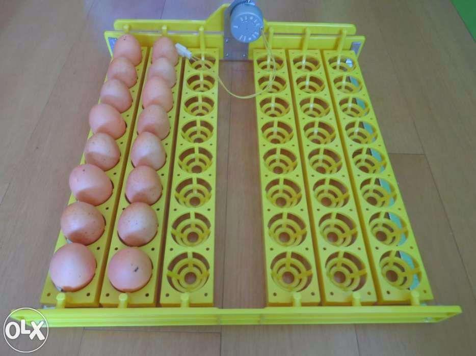 Tabuleiro 48 ovos, c/ motor de viragem automática