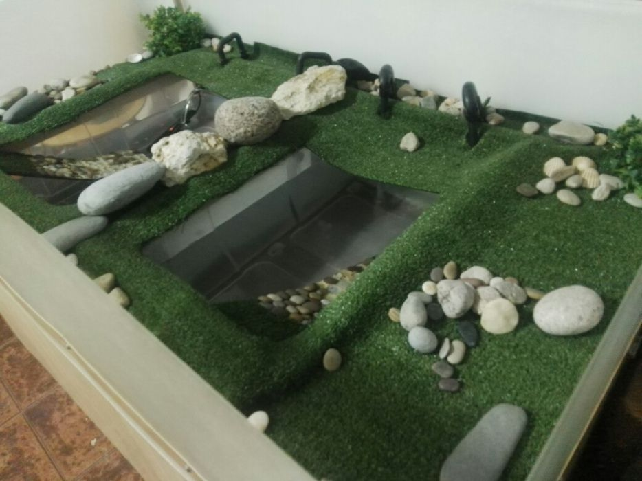 Aquário Tartarugas
