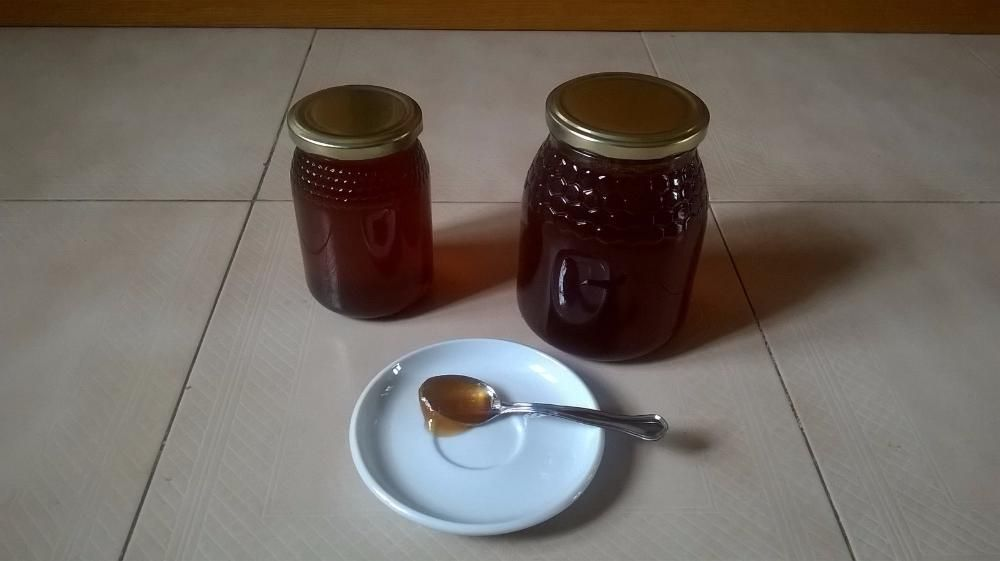 Mel multifloral directamente do apicultor MULTIFLORAL