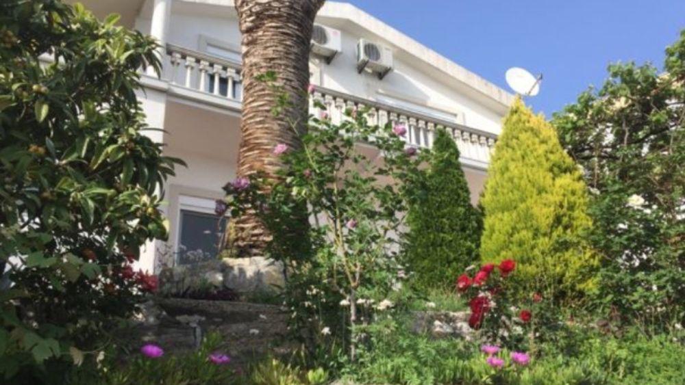 Нерухомість в чорногорії выбранное место жительства residenza elettiva