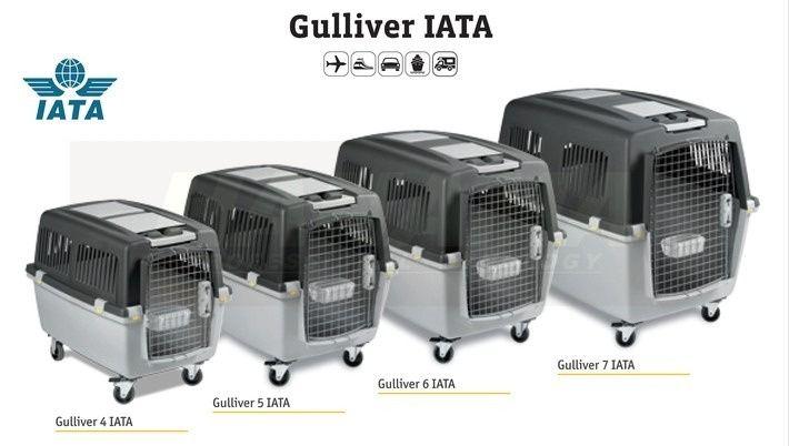 Transportadoras Gulliver IATA - Novas