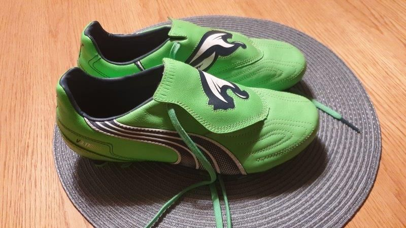 Permuta Rebotar Polo  Buty piłkarskie Puma v3.11 i FG - rozmiar 40, zielone Zielona Góra • OLX.pl