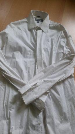 43, 182 188, XL, andre, koszula męska z kołnierzykiem  KsfGb