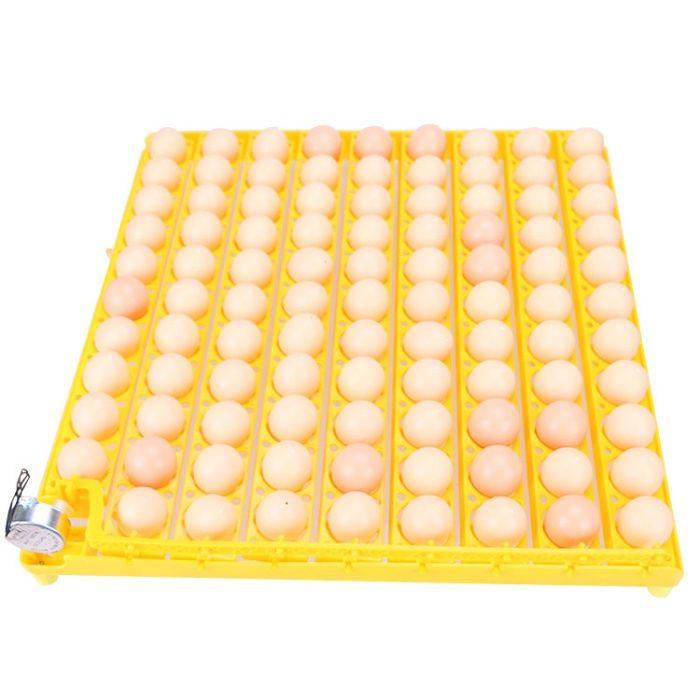 Chocadeira 98 ovos Porto - imagem 2